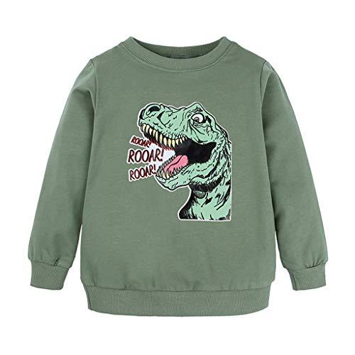 ASHOP T-Shirt BéBé GarçOn Fille Huat Cartoon Imprimé Dessin Animé Dinosaure Pull Tops DéContracté Sport, Enfant Sweat-Shirt à Manches Longues Hoodie Chemise Casual Automne
