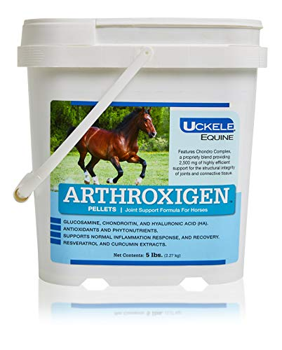 Uckele Arthroxigen Pellets for Horses, Joint & Bone Supplement Formula, Competition Ready, 5 lb