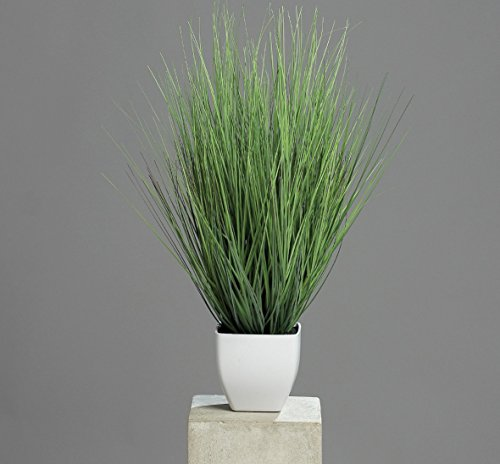 DPI Isolepsisgras - Kunstpflanze - im Topf - 60 cm