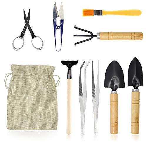 FALIDI Bonsai Tree Tools-Simple Indoor Gardening Tool Kit for Indoor Outdoor Bonsai Care Include Pruner, Fold Scissors, Mini Rake, 2 Tweezers,Shovel(10 Pack)