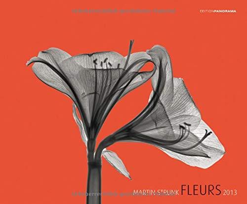 Fleurs - Premiumkalender 2013