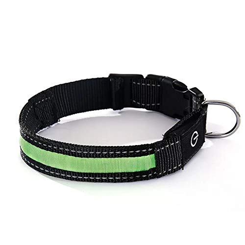 CSMZ Puppy Halsband en Set hondenlijn Pet Supplies met LED-verlichting, geschikt for Leuke Puppy (Color : Green)