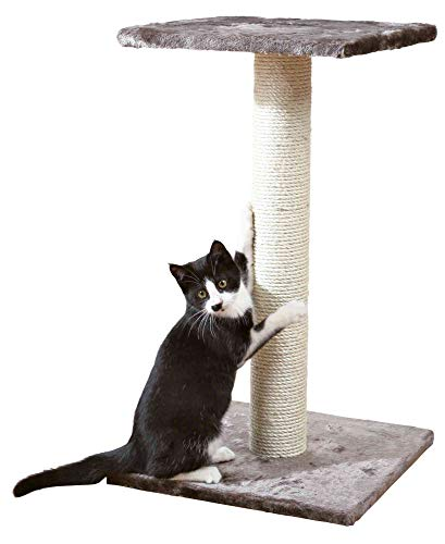 Photo de trixie-arbre-a-chat-69-cm