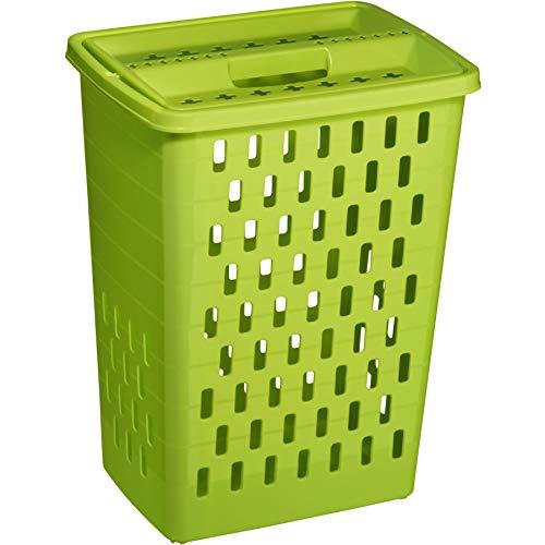 Rotho Wäschesammler Sunshine 40l in grün, Plastik, 45 x 35 x 25 cm