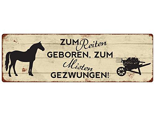 Interluxe METALLSCHILD Blechschild Türschild ZUM REITEN GEBOREN Geschenk Dekoration Pferde