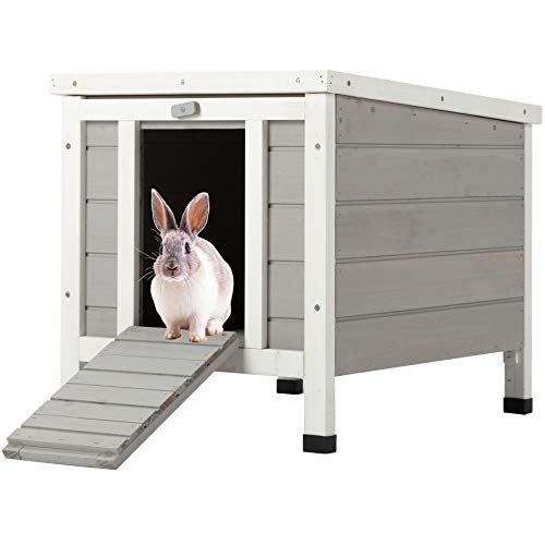 Outdoor Rabbit Hutch in Winter