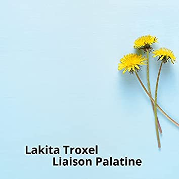 Liaison Palatine