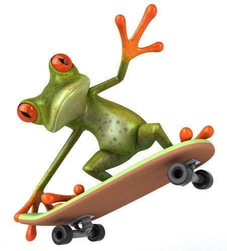 Sticker Frosch mit Skateboard I kfz_280 I 12,5 x 15 cm groß I für Motorrad Mofa Roller Notebook Laptop Auto-Aufkleber Bad-Aufkleber lustig wetterfest
