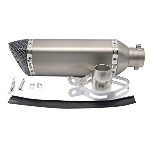 KESOTO Motorrad Φ 51mm Auspuff, Hochwertiger Sechskant Schalldämpfer aus Eloxiertem Aluminium, geeignet für 125-600ccm Dirt Bike, Quad, ATV, Silber