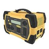 cheero Energy Carry 450Wh (124800mAh) 大容量 ポータブル電源 蓄電池 AC (100V コンセント 2口 500Wまで) / DC/USB 出力 正弦波