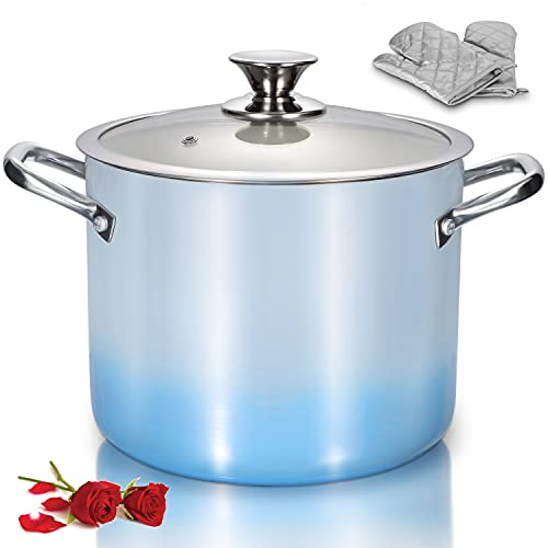 LovoIn Nonstick Stock Pot 7 Qt Soup Pasta Pot with Lid, 7-Quart Multi Stockpot Oven Safe Cooking Pot for Stew, Sauce & Reheat Food, Induction/ Oven/ Gas/ Stovetops Compatible for Family Meals, Blue