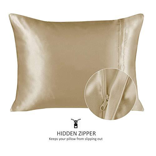 ShopBedding Luxury Satin Pillowcase for Hair – Queen Satin Pillowcase with Zipper, Champagne (1 per Pack) – Blissford