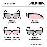 Fahrradbrillen Test