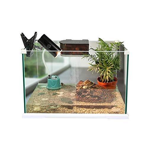 Haustier Vivarium Floatglas Schildkröte-Tank, Ökologie transparent gehörnter Frosch Einsiedler Krabben Aquarium Pet Shop Livery Body Pet Watch Box Vivarium Fish Terrarium Home House Dekoration Zuchtbo