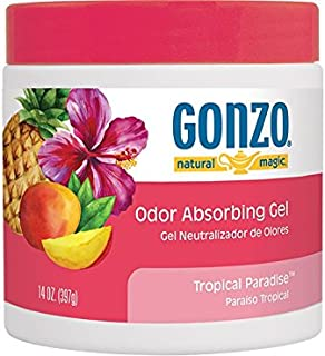 Gonzo Odor Absorbing Gel - Odor Eliminator for Car RV Closet Bathroom Pet Area Attic & More - Captures and Absorbs Smoke Mold and Other Odors - 14 Ounce, Tropical Paradise