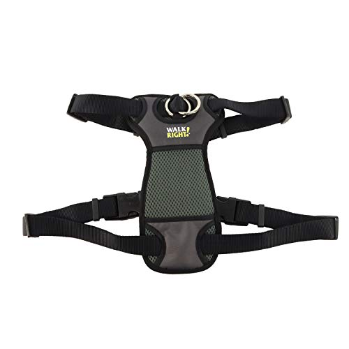 Coastal - Walk Right - Front-Connect Padded Dog Harness, Black, SML (16