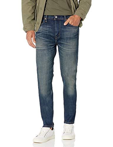 Levi's 510 Skinny Fit Men's Jeans, Morrow - Stretch, 29W X 34L