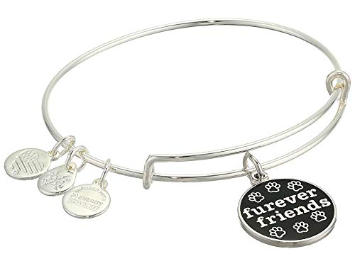 Alex and Ani Color Infusion, Furever Friends Bangle Bracelet Shiny Silver One Size