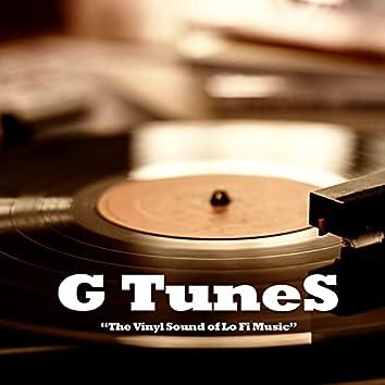 The Vinyl Sound of Lo Fi Music