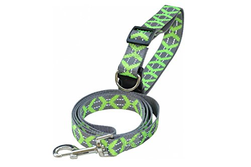 nanook Set Hundeleine mit Hundehalsband reflektierend, verstellbar, mittelgroße bis große Hunde, Material: Nylon - Farbe: grün