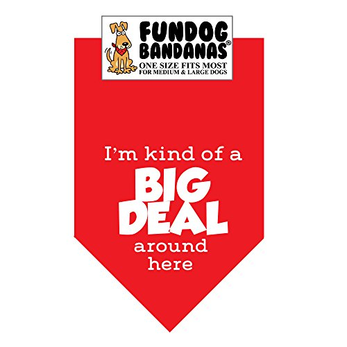 I'm Kind of a Big Deal Around Here Dog Bandana (One Size Fits Most for Medium to Large Dogs, Red)