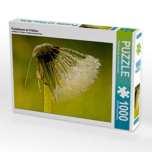 CALVENDO Puzzle Pusteblume im Frühtau 1000 Teile Lege-Größe 64 x 48 cm Foto-Puzzle Bild von Bild-erzaehler
