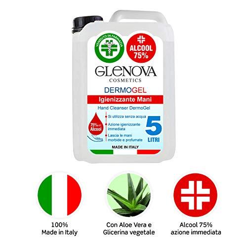 5 Litri Tanica Gel per Mani DermoGEL Alcool 75% GLENOVA Igienizzante Antibatterico Alcolico Sanificante Aloe Vera Profumato Contro Germi e Batteri Asciugatura rapida senz'acqua 100% Italiano