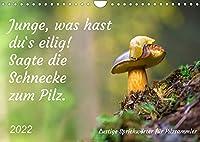 Junge, was hast du`s eilig (Wandkalender 2022 DIN A4 quer): Lustige Sprichwoerter fuer Pilzfreunde (Monatskalender, 14 Seiten )