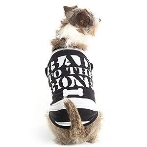Bad to The Bone Jailbird Dog Shirt – Cute Convict Halloween Costume