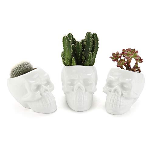 T4U White Ceramic Skull Shaped Succulent Planter Pots Set of 3, Cute Cactus Plant Pot Creative Pen Pencil Holder for Home Office Desk Decoration Birthday Wedding Christmas Gift