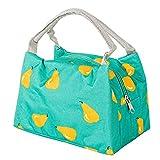 GYYARSX Bolsa Termica Porta Alimentos Bolso Shopper Térmico Pequeño Portátil Bolsa De Almacenamiento En Frío De Fiambrera(Size:23x15x17cm,Color:Green)