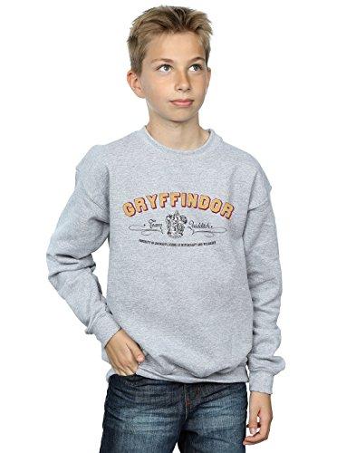 Harry Potter Jungen Gryffindor Team Quidditch Sweatshirt 12-13 Years Sport Grey