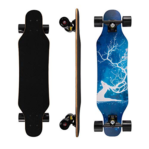 affodable WL Skateboard – Kids Boys for Beginners Complete Skateboard for Girls Youth – Standard 31 x 8 skateboard with 7 layers of maple deck skateboard.