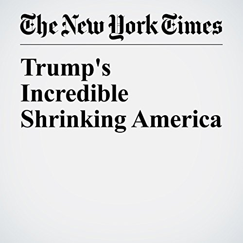 Trump's Incredible Shrinking America copertina