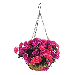 Silk Flower Arrangements Mynse Hanging Coco Basket and Artificial Azalea Flowers fpr Balcony Home Decoration, Purple and Red