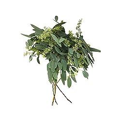 Floral, Eucalyptus Seeded