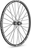 Dt Swiss Unisex - Bicicleta de Adulto H 1900 Spline, Color Negro, 29 pulgadas/25 mm