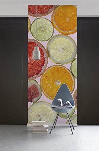 Komar 1098-DV1 Vlies Fototapete Fresh Tapete, Wand Dekoration, Limetten, Orangen, Zitronen, Frucht-1098-DV1, bunt, 100 x 280 cm (Breite x Höhe)