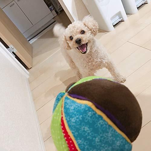 プラッツ(PLATZ)犬用おもちゃサーカスボールSサイズ