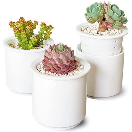多肉植物 鉢 おしゃれ 切立 [3個セット] 2.5号 受け皿のいらない 多肉植物鉢 磁器製 日本製 植木鉢 陶器 白 シンプル ミニ サボテン プランター