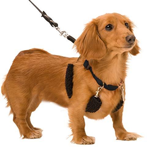 SPORN Dog Halter, Black, Small
