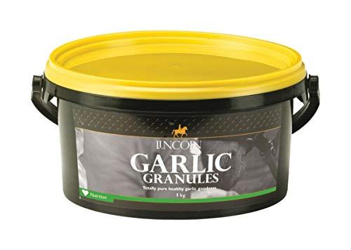 Lincoln Garlic Granules - 2.5kg Tube