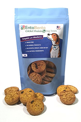 ENTOBENTO Pumpkin Blueberry Dog Treats made with...