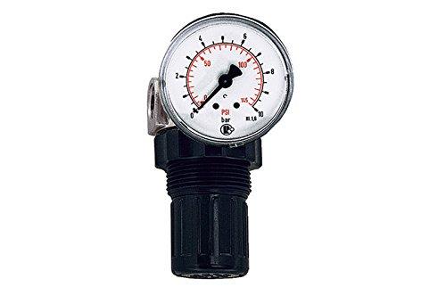 RIEGLER 101304-484.06 Druckregler für Wasser, inkl. Mano, G 1/4, 0,2-6 bar, PE max. 25, 1Stk