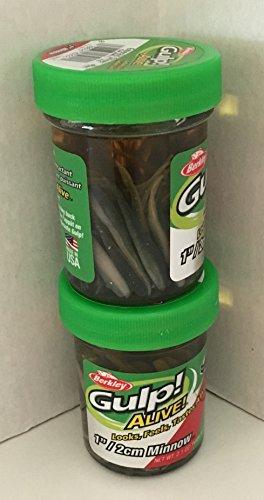 Gulp! Alive! Bait 1 INCH Emerald Shiner Minnow 2 jar Bundle Berkley Perch Minnows ice Fishing Bait Panfish Minnow