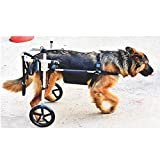 Dog wheelchair Ruote per cani a rotelle - Per cani di media taglia 15-60 kg -...