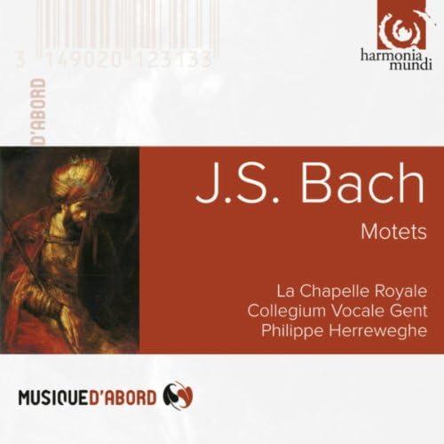 フィリップ・ヘレヴェッヘ, La Chapelle Royale & コレギウム・ヴォカーレ・ヘント