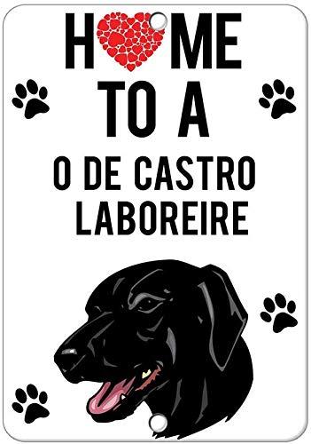 Home To C O De Castro Laboreire hund retro look järn 20 x 30 cm dekoration konstskylt för hem kök badrum gård trädgård garage inspirerande citat väggdekor