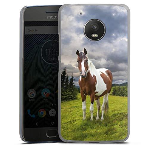 DeinDesign Hard Hülle kompatibel mit Motorola Moto G5 Schutzhülle transparent Smartphone Backcover Pferd Natur Wiese