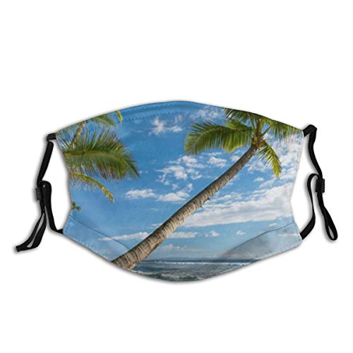 N/D Tropics Coast Sky Waves Scenery Ocean Hawaii Palma Trees Nature Reusable Cotton Dust Proof Unisex Mouth Masks Fashion Washable Masks, Print Pattern Cloth Balaclava Outdoor.